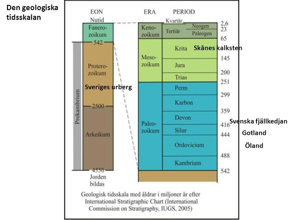 Den geologiska tidsskalan Sveriges urberg Öland Gotland Svenska fjällkedjan Skånes kalksten