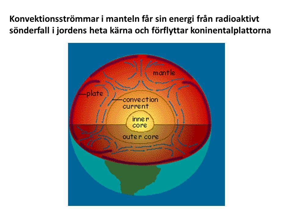 Konvektionsströmmar i manteln får sin energi från radioaktivt sönderfall i jordens heta kärna och förflyttar koninentalplattorna