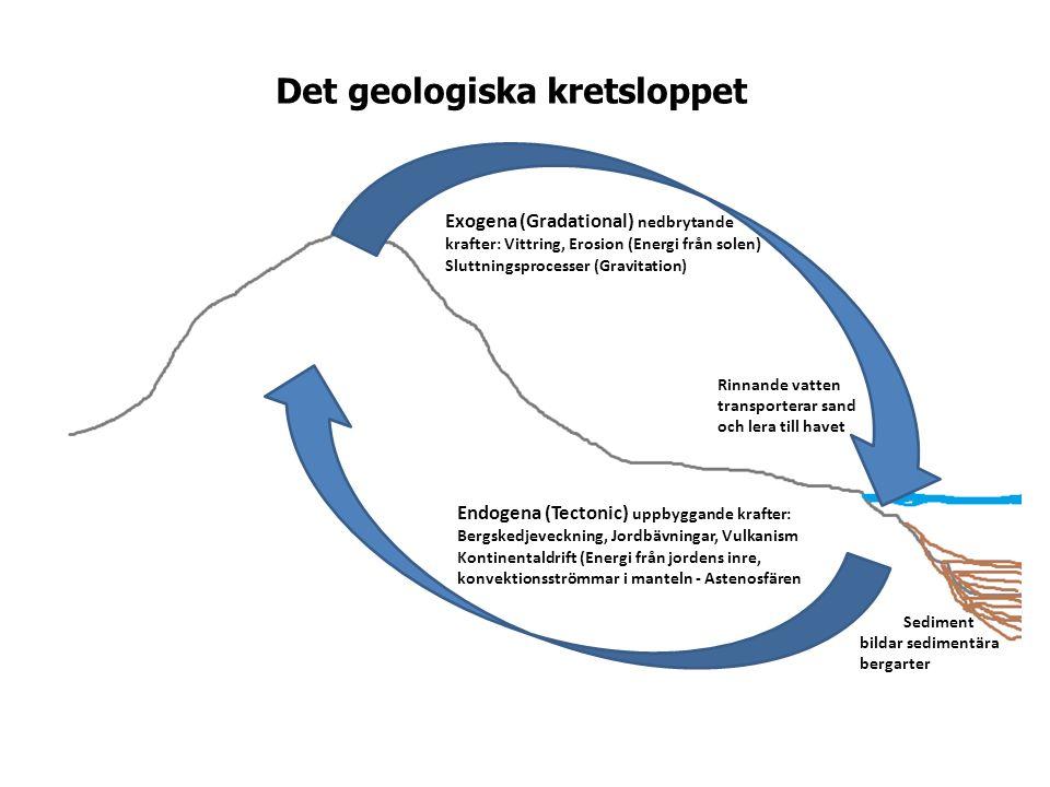 Endogena (Tectonic) uppbyggande krafter: Bergskedjeveckning, Jordbävningar, Vulkanism Kontinentaldrift (Energi från jordens inre, konvektionsströmmar i manteln - Astenosfären Exogena (Gradational) nedbrytande krafter: Vittring, Erosion (Energi från solen) Sluttningsprocesser (Gravitation) Rinnande vatten transporterar sand och lera till havet Sediment bildar sedimentära bergarter Det geologiska kretsloppet