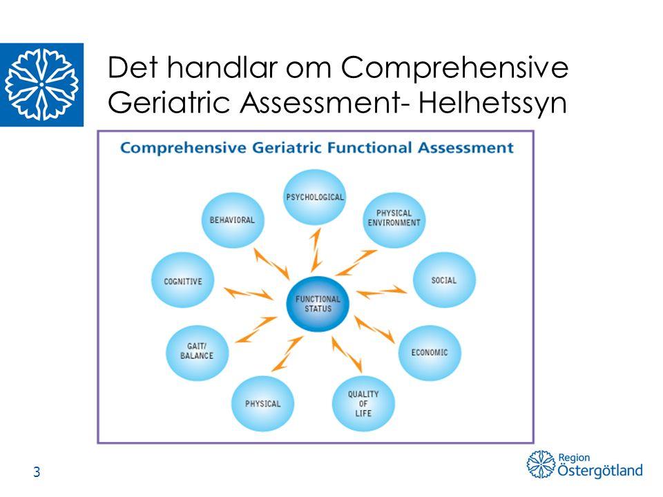 Det handlar om Comprehensive Geriatric Assessment- Helhetssyn 3