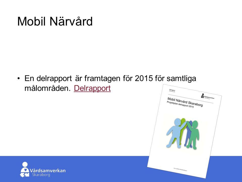 Skaraborgs Sjukhus Mobil Närvård En delrapport är framtagen för 2015 för samtliga målområden.
