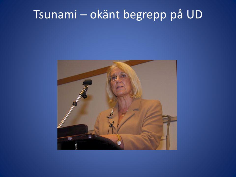 Tsunami – okänt begrepp på UD