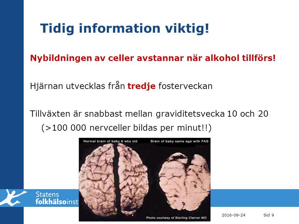 Tidig information viktig. Nybildningen av celler avstannar när alkohol tillförs.