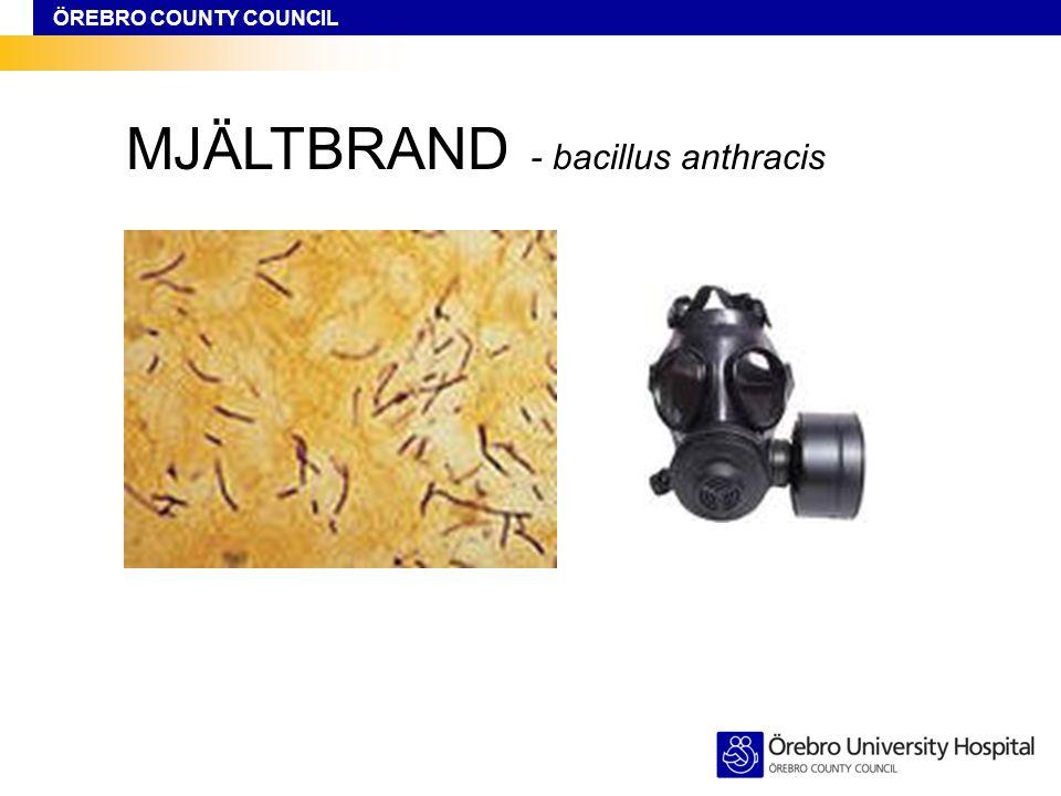 ÖREBRO COUNTY COUNCIL MJÄLTBRAND - bacillus anthracis
