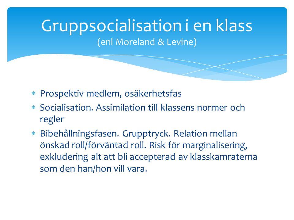 Prospektiv medlem, osäkerhetsfas  Socialisation.