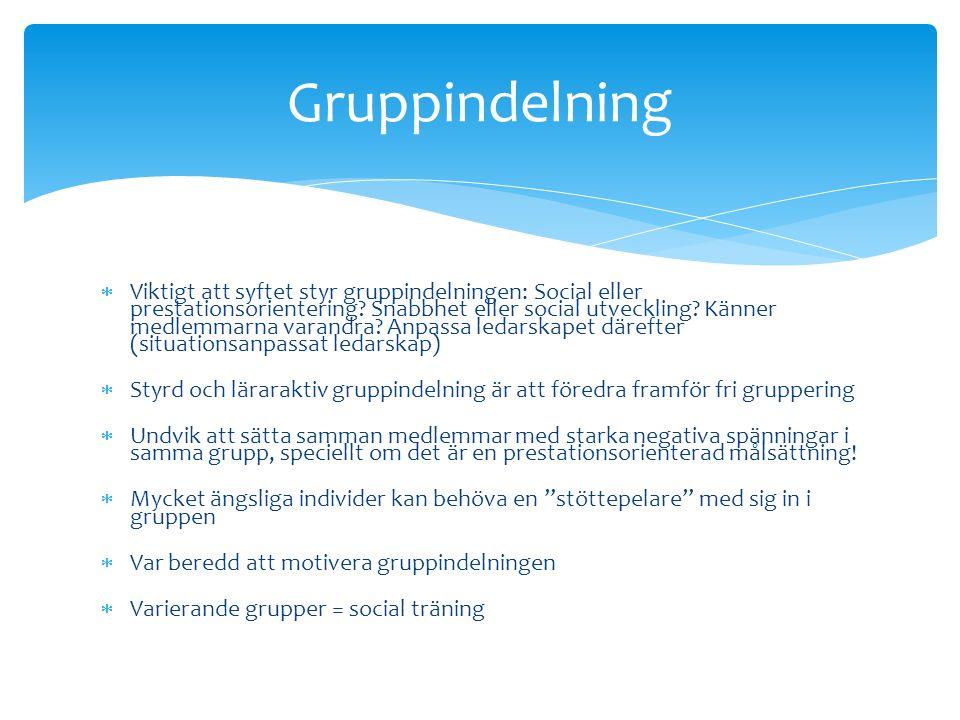  Viktigt att syftet styr gruppindelningen: Social eller prestationsorientering.