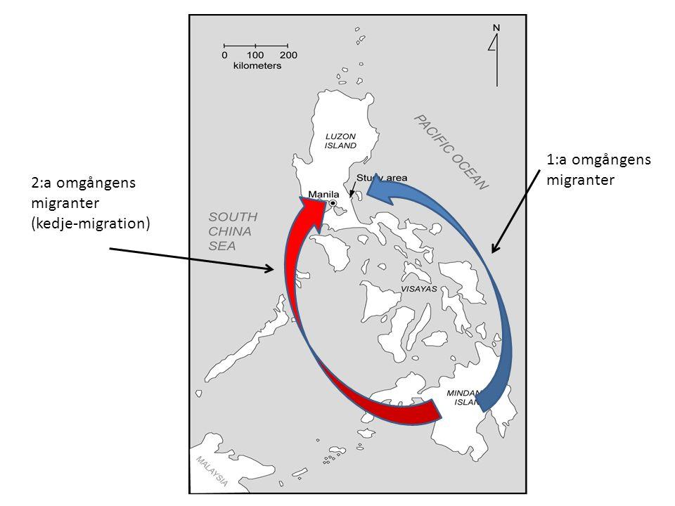 1:a omgångens migranter 2:a omgångens migranter (kedje-migration)
