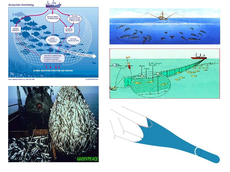 Exempel på långfråga: Miljöarbetet inom logistikområdet kan delas in i 4 nivåer.