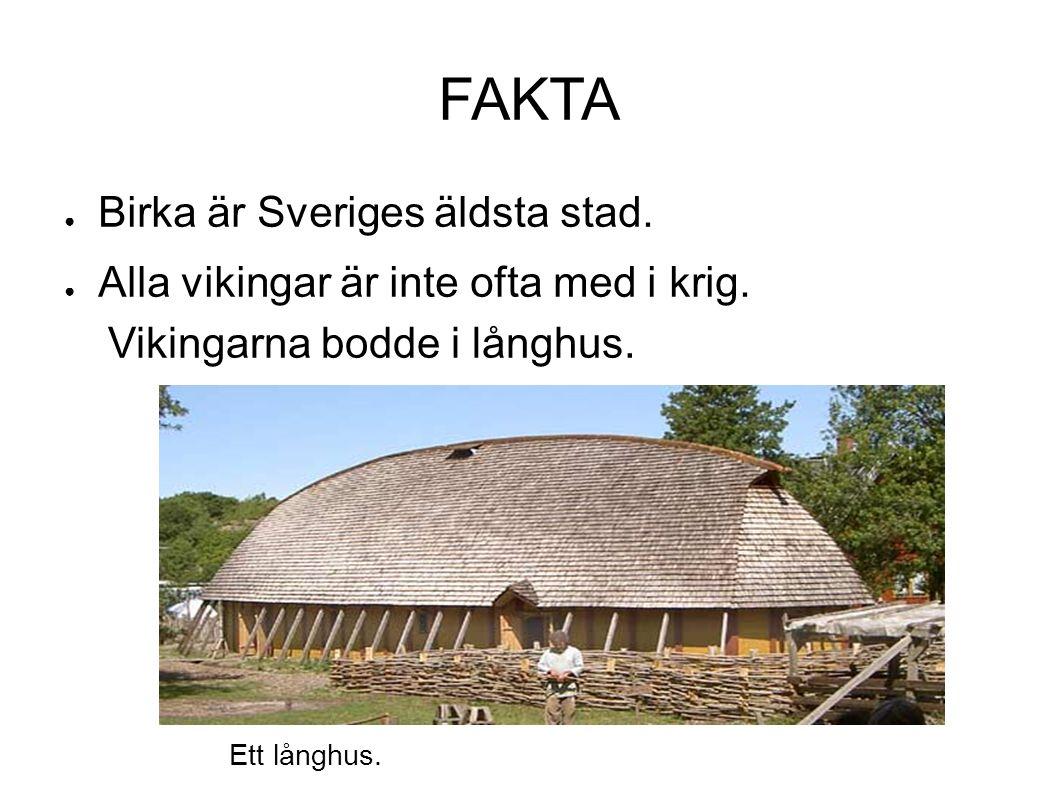 FAKTA ● Birka är Sveriges äldsta stad. ● Alla vikingar är inte ofta med i krig. Vikingarna bodde i långhus. Ett långhus.