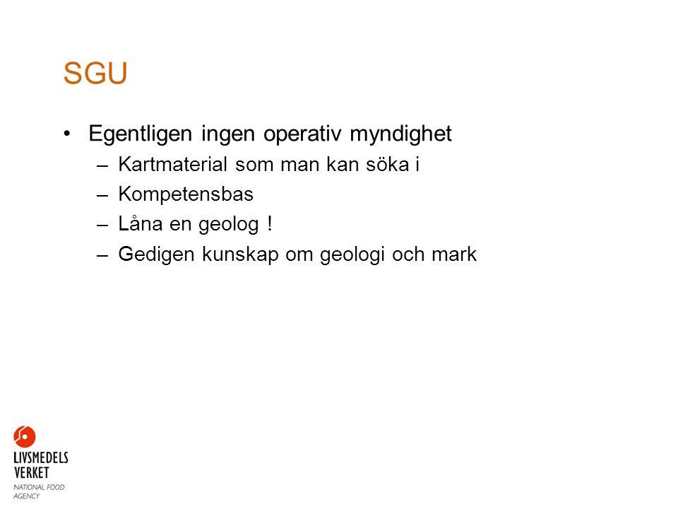 Egentligen ingen operativ myndighet –Kartmaterial som man kan söka i –Kompetensbas –Låna en geolog .