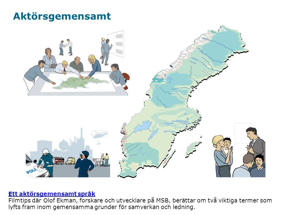 Myndigheten för samhällsskydd och beredskap Bli bra på att kommunicera, dokumentera och visualisera