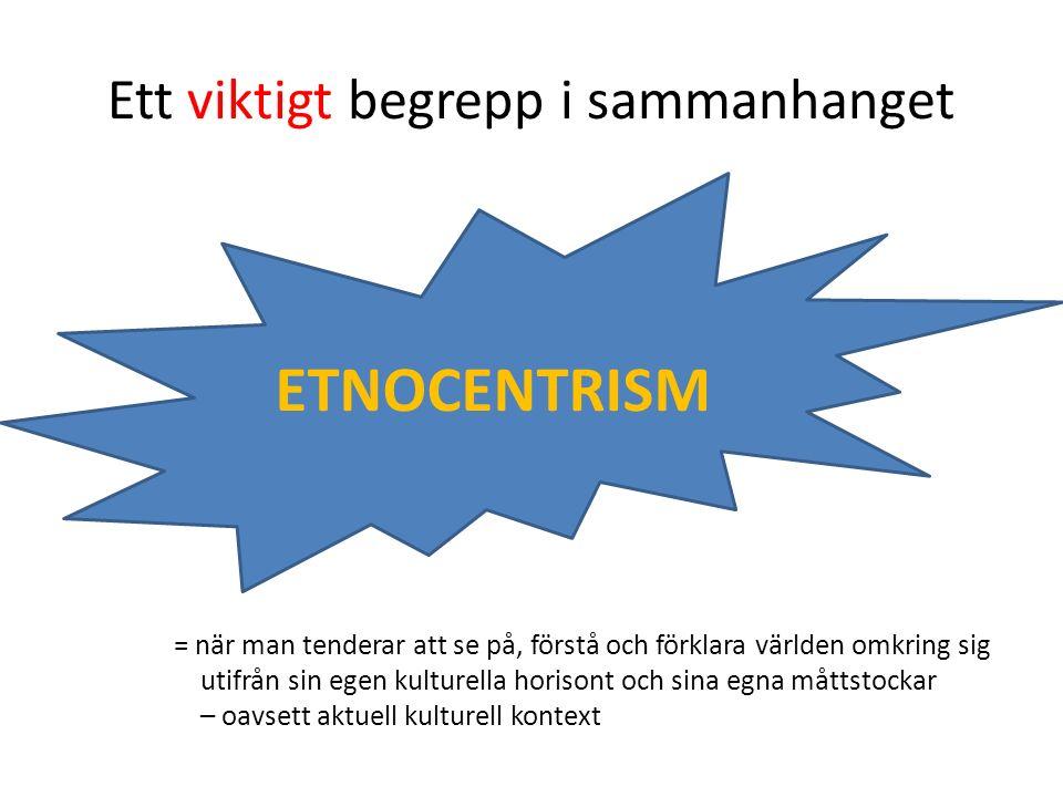 Ett viktigt begrepp i sammanhanget ETNOCENTRISM = när man tenderar att se på, förstå och förklara världen omkring sig utifrån sin egen kulturella horisont och sina egna måttstockar – oavsett aktuell kulturell kontext