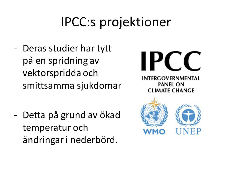 IPCC:s projektioner -Deras studier har tytt på en spridning av vektorspridda och smittsamma sjukdomar -Detta på grund av ökad temperatur och ändringar i nederbörd.