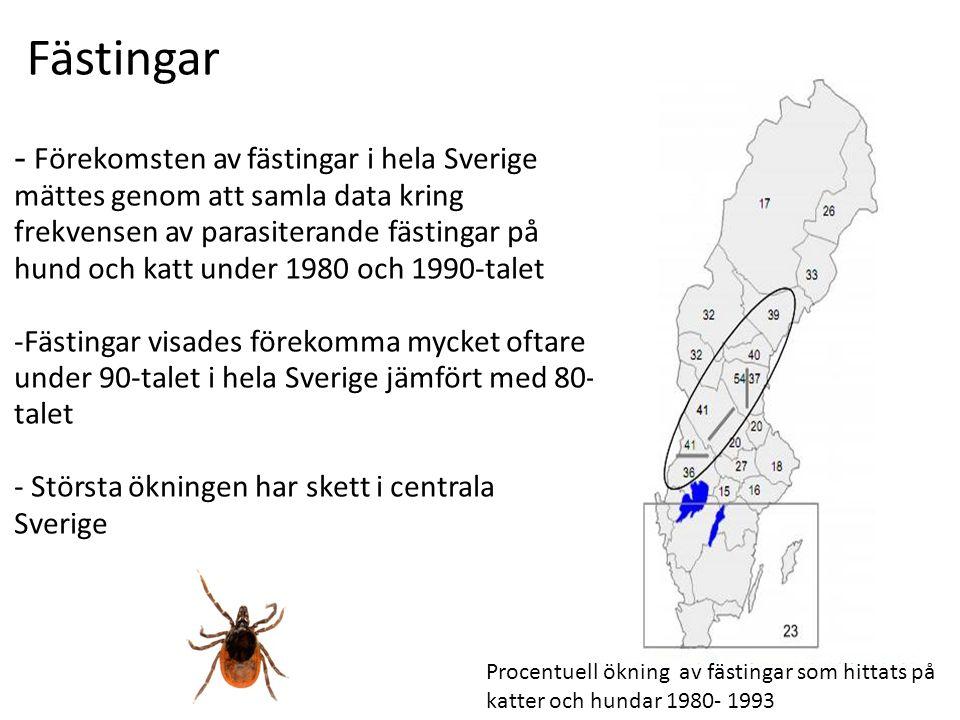 Fästingar - Förekomsten av fästingar i hela Sverige mättes genom att samla data kring frekvensen av parasiterande fästingar på hund och katt under 1980 och 1990-talet -Fästingar visades förekomma mycket oftare under 90-talet i hela Sverige jämfört med 80- talet - Största ökningen har skett i centrala Sverige Procentuell ökning av fästingar som hittats på katter och hundar 1980- 1993