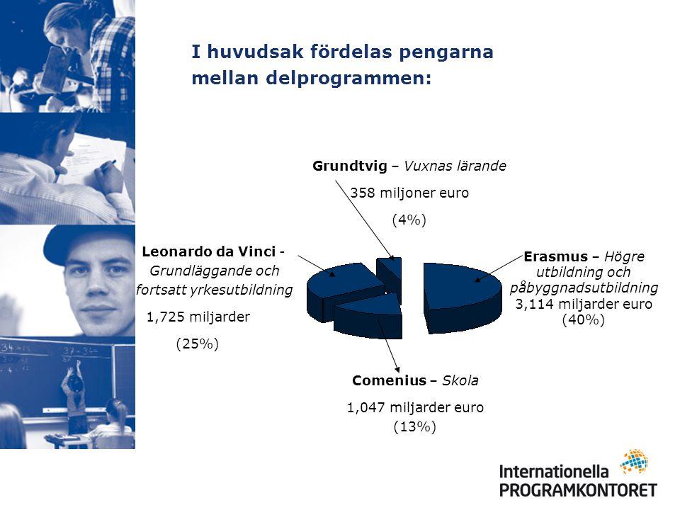 I huvudsak fördelas pengarna mellan delprogrammen: Leonardo da Vinci - Grundläggande och fortsatt yrkesutbildning 1,725 miljarder (25%) Erasmus– Högre utbildning och påbyggnadsutbildning 3,114 miljarder euro (40%) Comenius – Skola 1,047 miljarder euro (13%) Grundtvig – Vuxnas lärande 358 miljoner euro (4%)