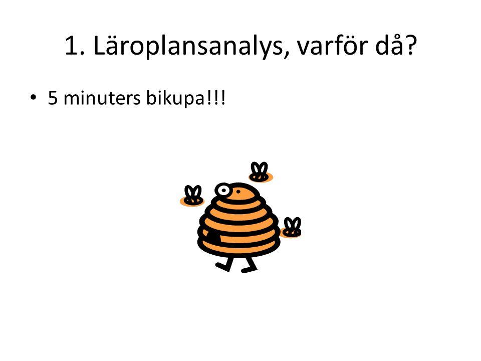 1. Läroplansanalys, varför då 5 minuters bikupa!!!