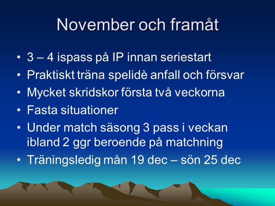 November och framåt 3 – 4 ispass på IP innan seriestart Praktiskt träna spelidè anfall och försvar Mycket skridskor första två veckorna Fasta situationer Under match säsong 3 pass i veckan ibland 2 ggr beroende på matchning Träningsledig mån 19 dec – sön 25 dec