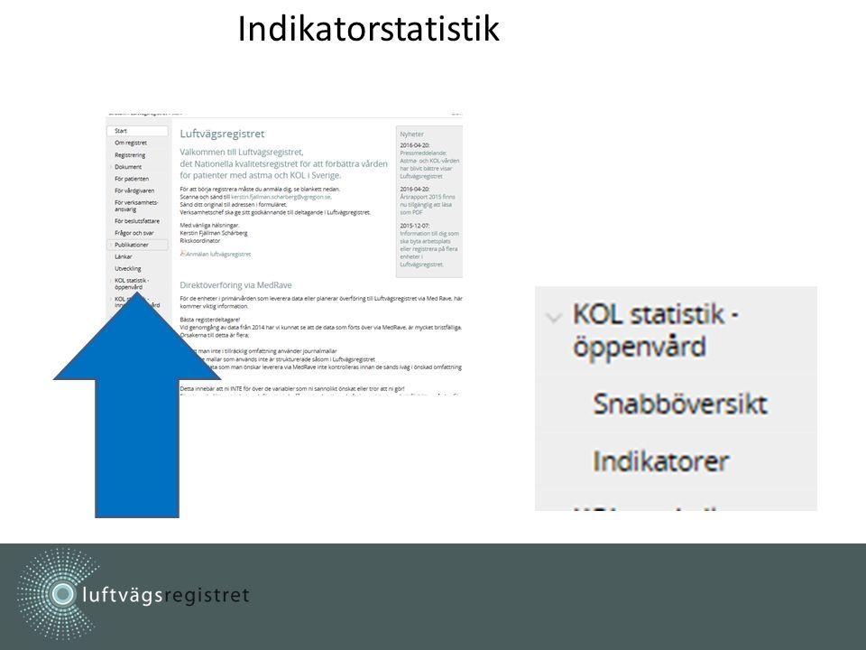 Indikatorstatistik