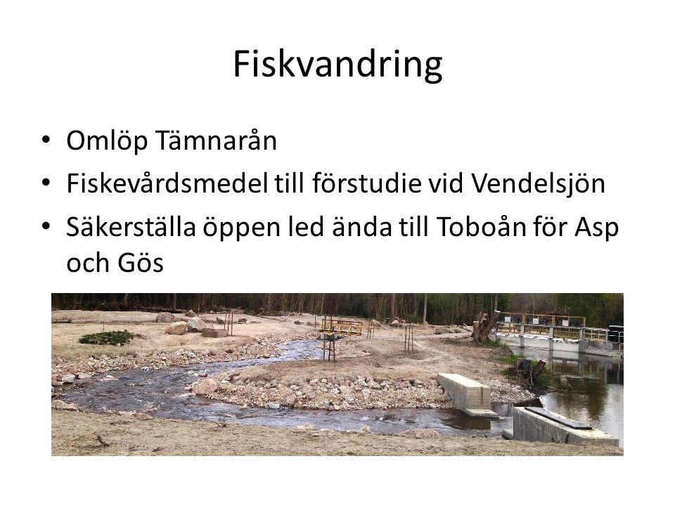 Fiskvandring Omlöp Tämnarån Fiskevårdsmedel till förstudie vid Vendelsjön Säkerställa öppen led ända till Toboån för Asp och Gös