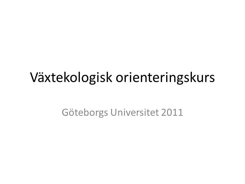 Växtekologisk orienteringskurs Göteborgs Universitet 2011