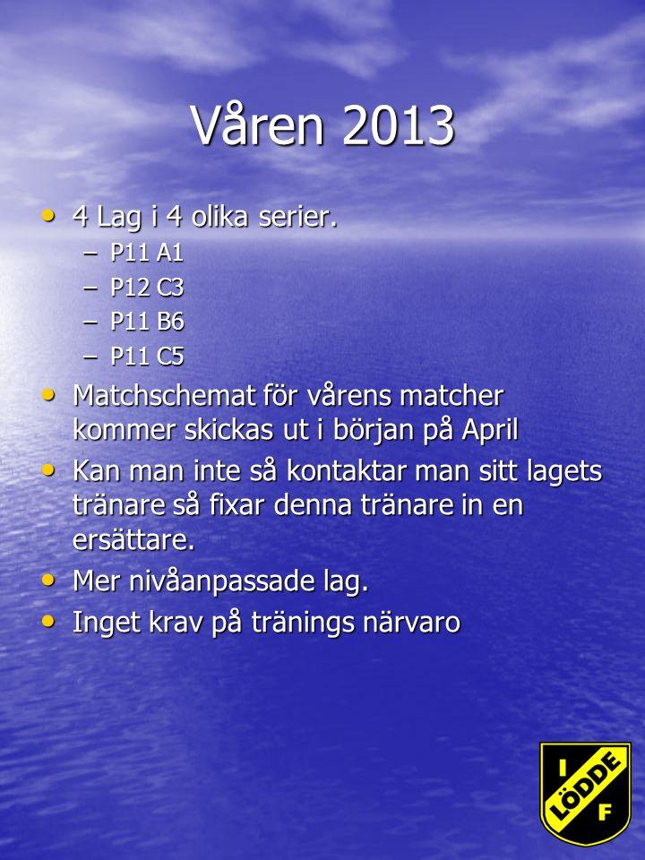 Våren 2013 4 Lag i 4 olika serier. 4 Lag i 4 olika serier.