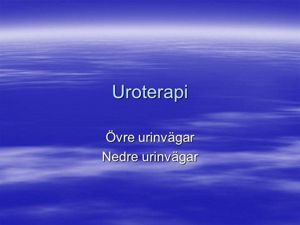 Uroterapi Övre urinvägar Nedre urinvägar