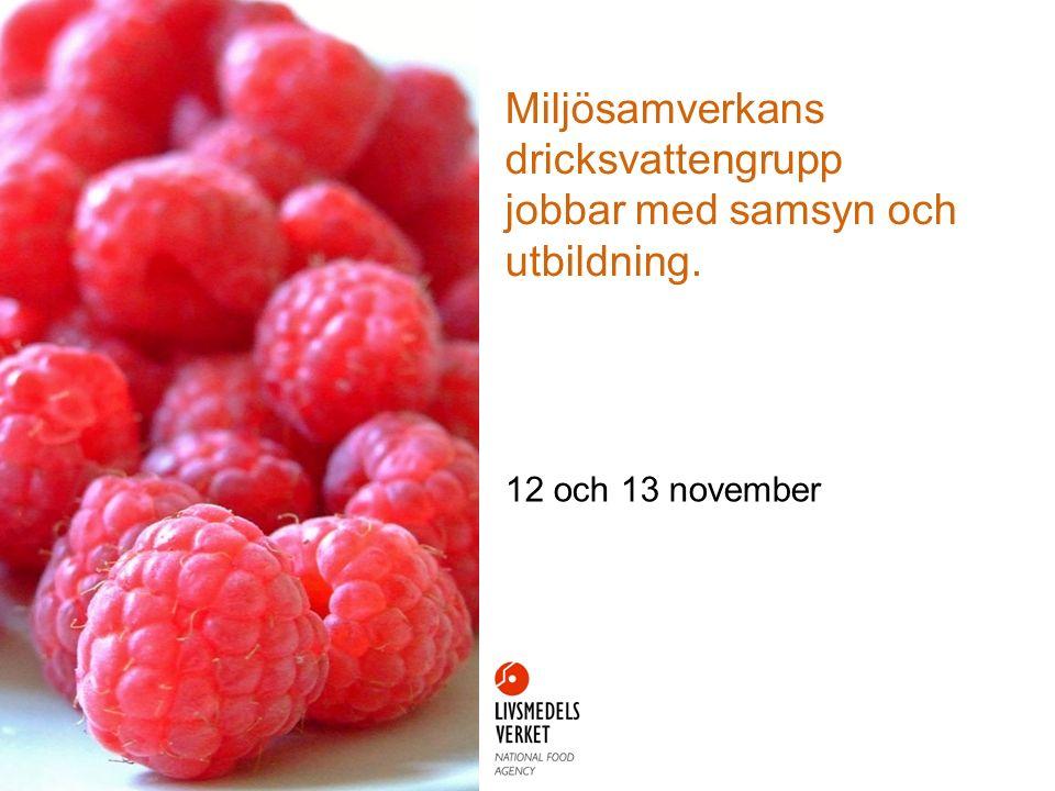 Miljösamverkans dricksvattengrupp jobbar med samsyn och utbildning. 12 och 13 november