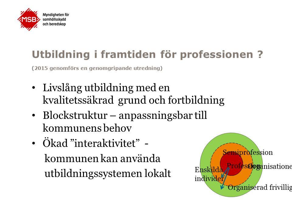 Utbildning i framtiden för professionen .