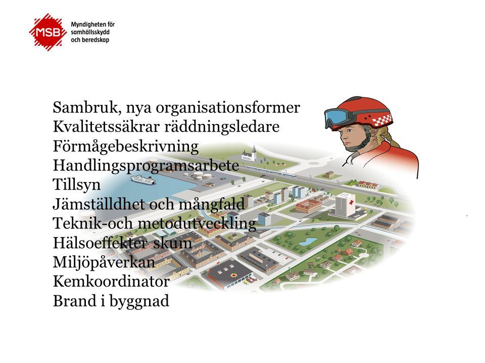 Sambruk, nya organisationsformer Kvalitetssäkrar räddningsledare Förmågebeskrivning Handlingsprogramsarbete Tillsyn Jämställdhet och mångfald Teknik-och metodutveckling Hälsoeffekter skum Miljöpåverkan Kemkoordinator Brand i byggnad