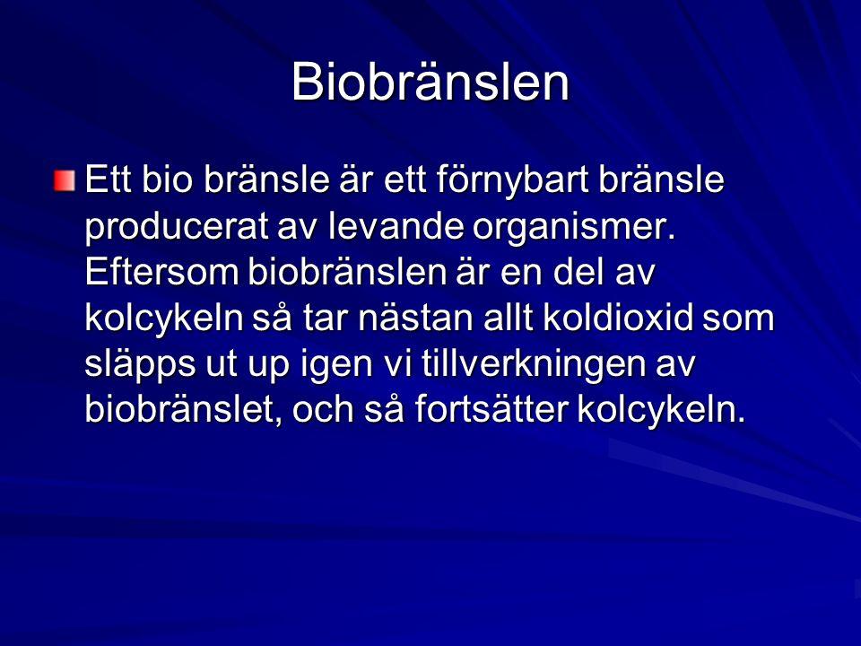 Biobränslen Ett bio bränsle är ett förnybart bränsle producerat av levande organismer. Eftersom biobränslen är en del av kolcykeln så tar nästan allt