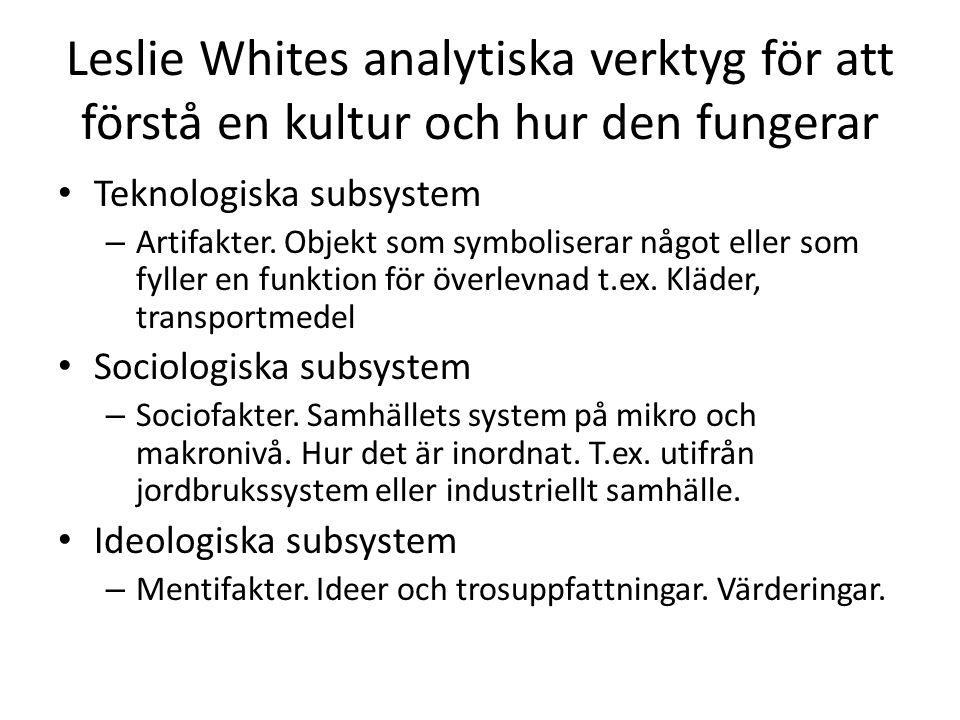 Leslie Whites analytiska verktyg för att förstå en kultur och hur den fungerar Teknologiska subsystem – Artifakter.
