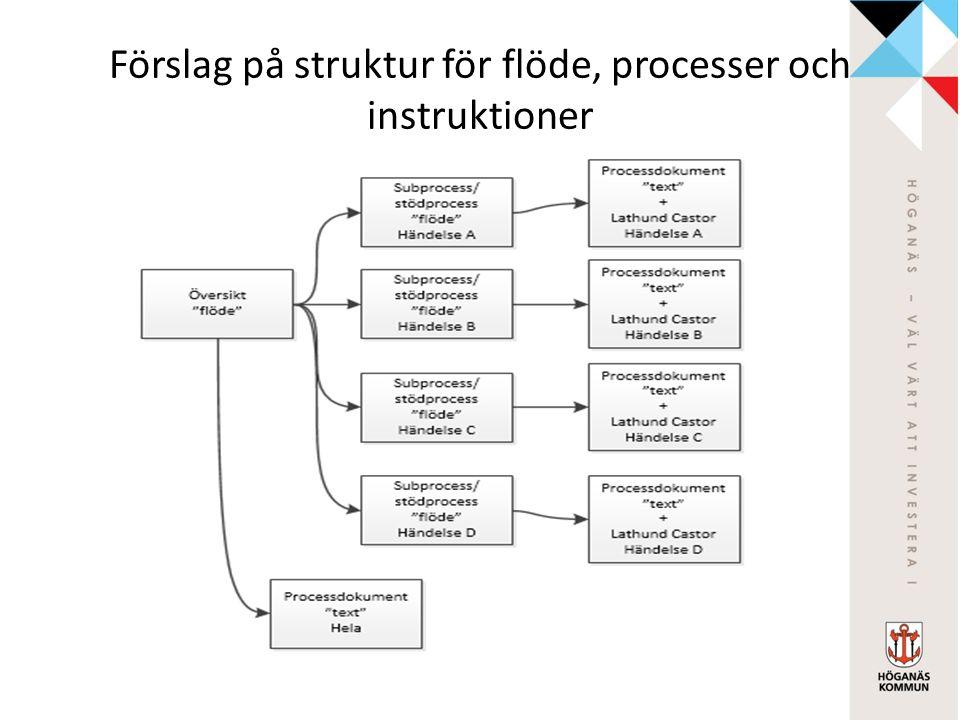Förslag på struktur för flöde, processer och instruktioner