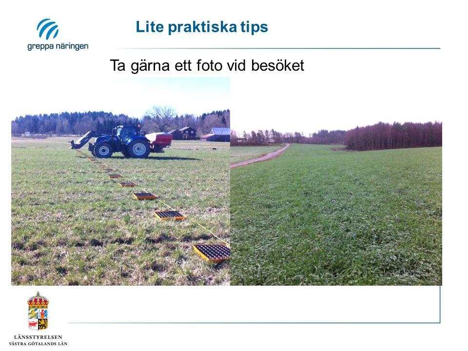 Ta gärna ett foto vid besöket Lite praktiska tips