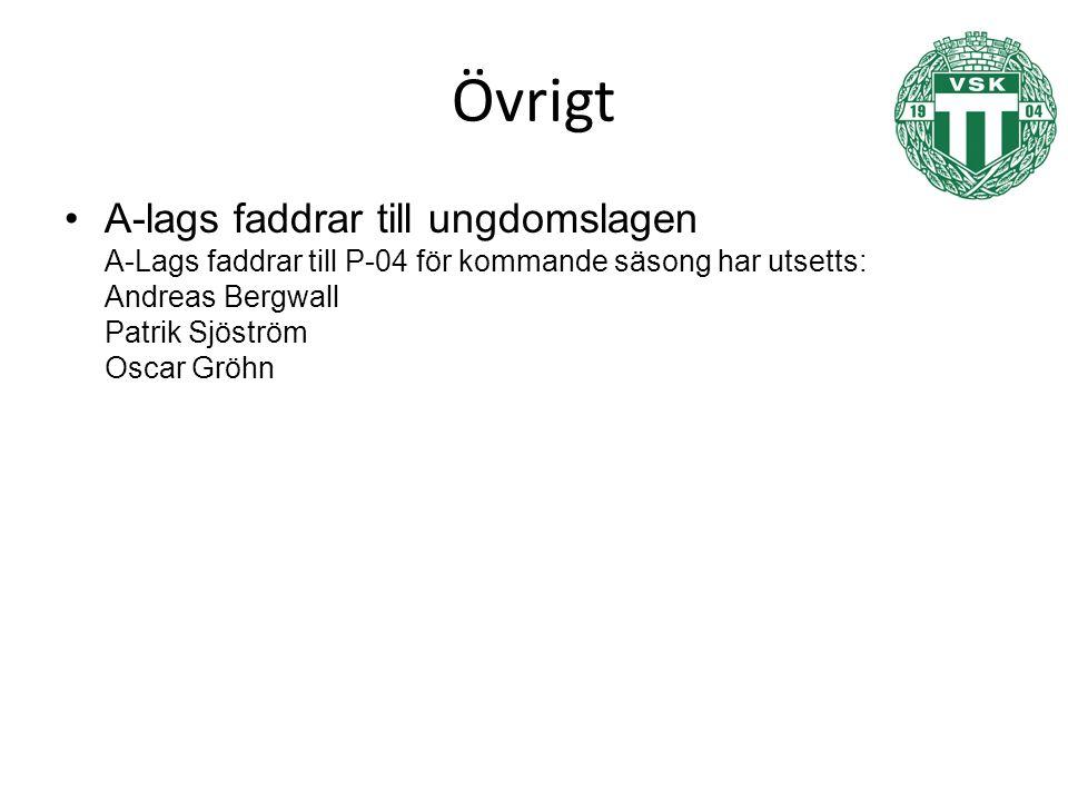 Övrigt A-lags faddrar till ungdomslagen A-Lags faddrar till P-04 för kommande säsong har utsetts: Andreas Bergwall Patrik Sjöström Oscar Gröhn