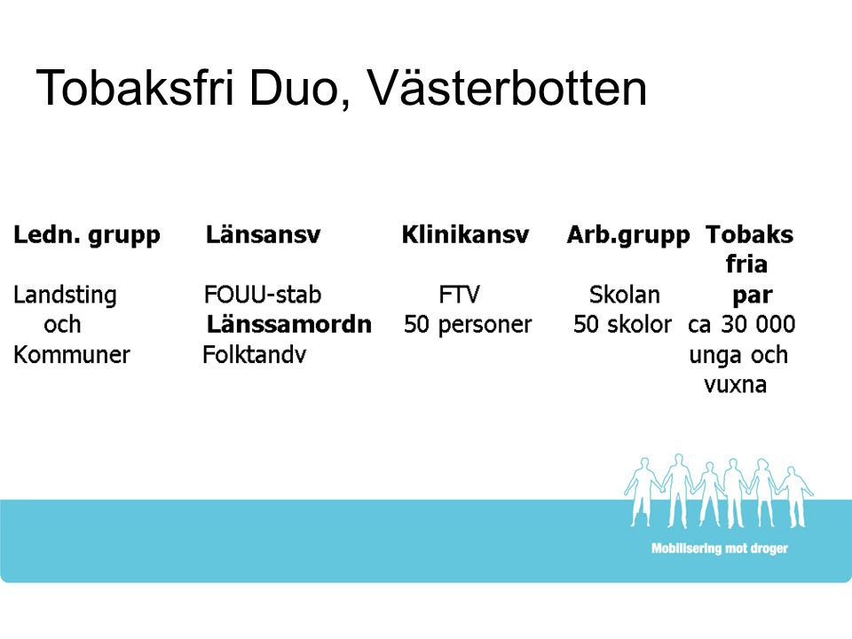 Tobaksfri Duo, Västerbotten