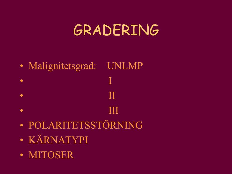 GRADERING Malignitetsgrad: UNLMP I II III POLARITETSSTÖRNING KÄRNATYPI MITOSER