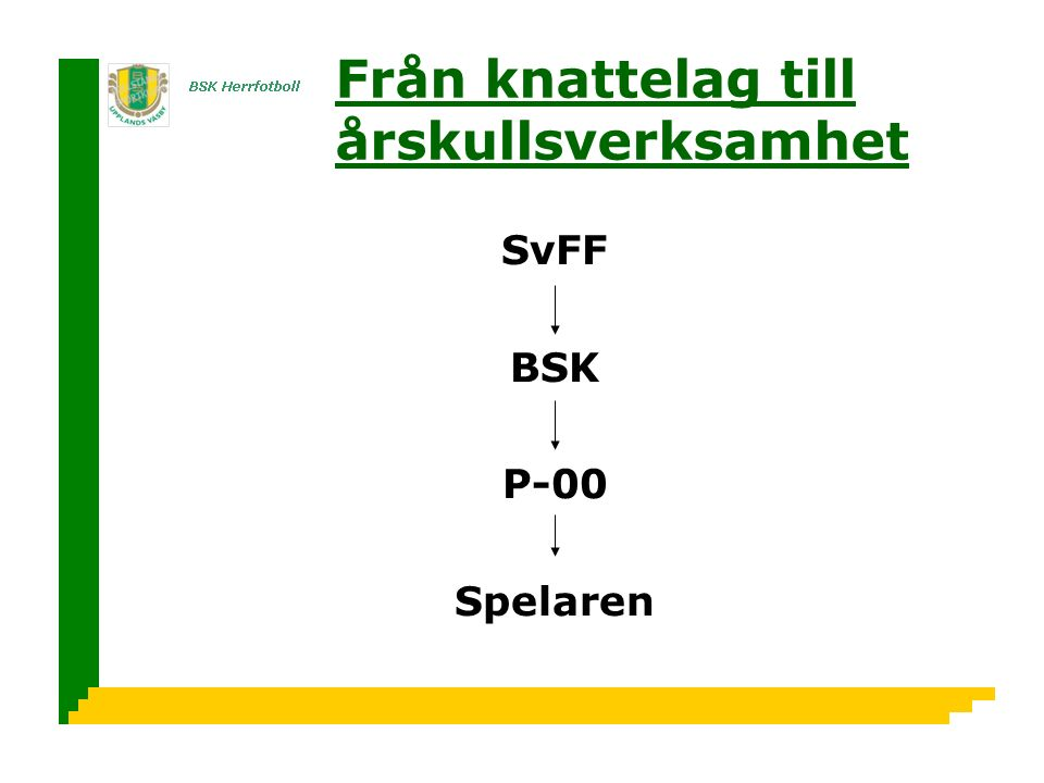 Från knattelag till årskullsverksamhet SvFF BSK P-00 Spelaren