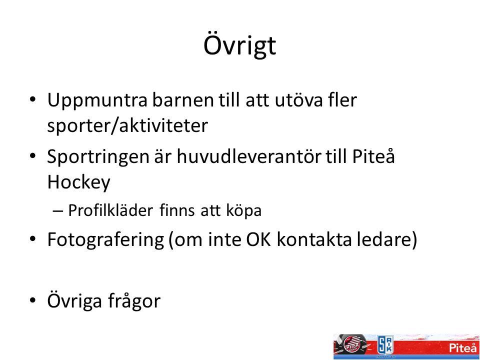 Övrigt Uppmuntra barnen till att utöva fler sporter/aktiviteter Sportringen är huvudleverantör till Piteå Hockey – Profilkläder finns att köpa Fotogra