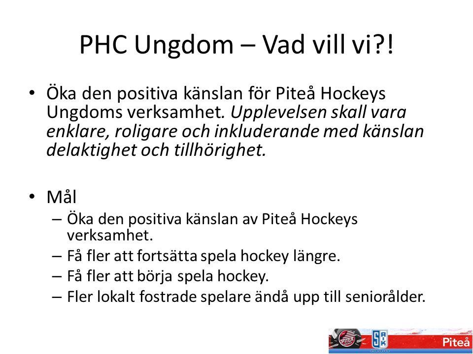 PHC Ungdom – Vad vill vi?! Öka den positiva känslan för Piteå Hockeys Ungdoms verksamhet. Upplevelsen skall vara enklare, roligare och inkluderande me