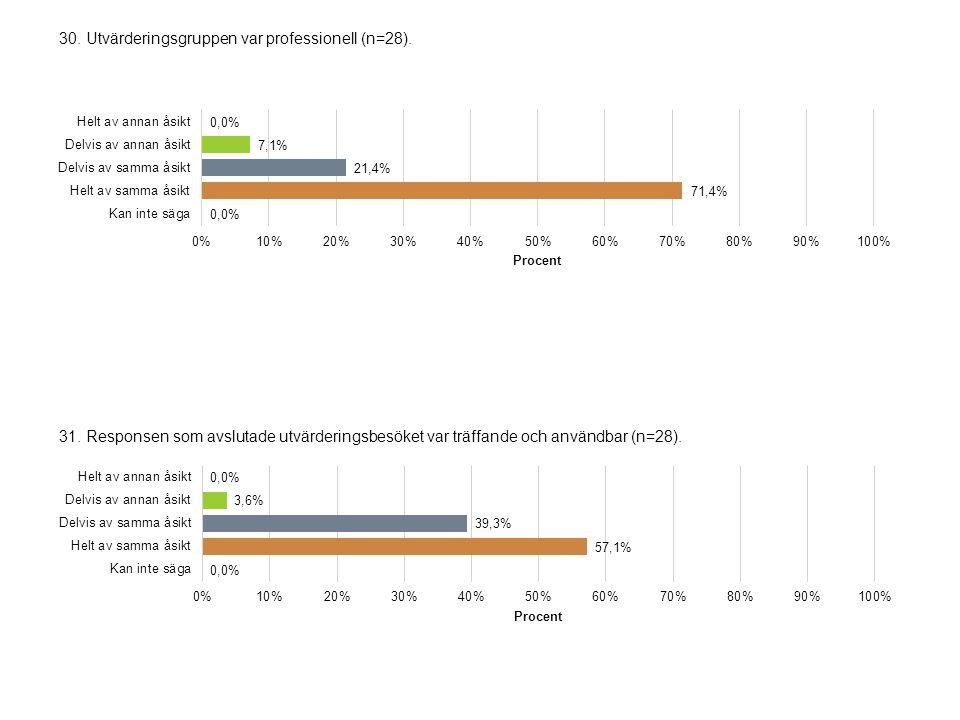 30. Utvärderingsgruppen var professionell (n=28).