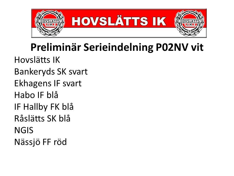 Planerade cuper 2013 Fadis-Cupen Nässjö, söndag 7 april -5 matcher 2x12min HIK-dagen 15 Juni, egen cup.