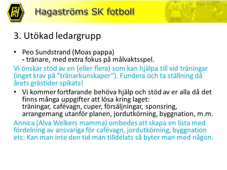 3. Utökad ledargrupp Peo Sundstrand (Moas pappa) - tränare, med extra fokus på målvaktsspel.