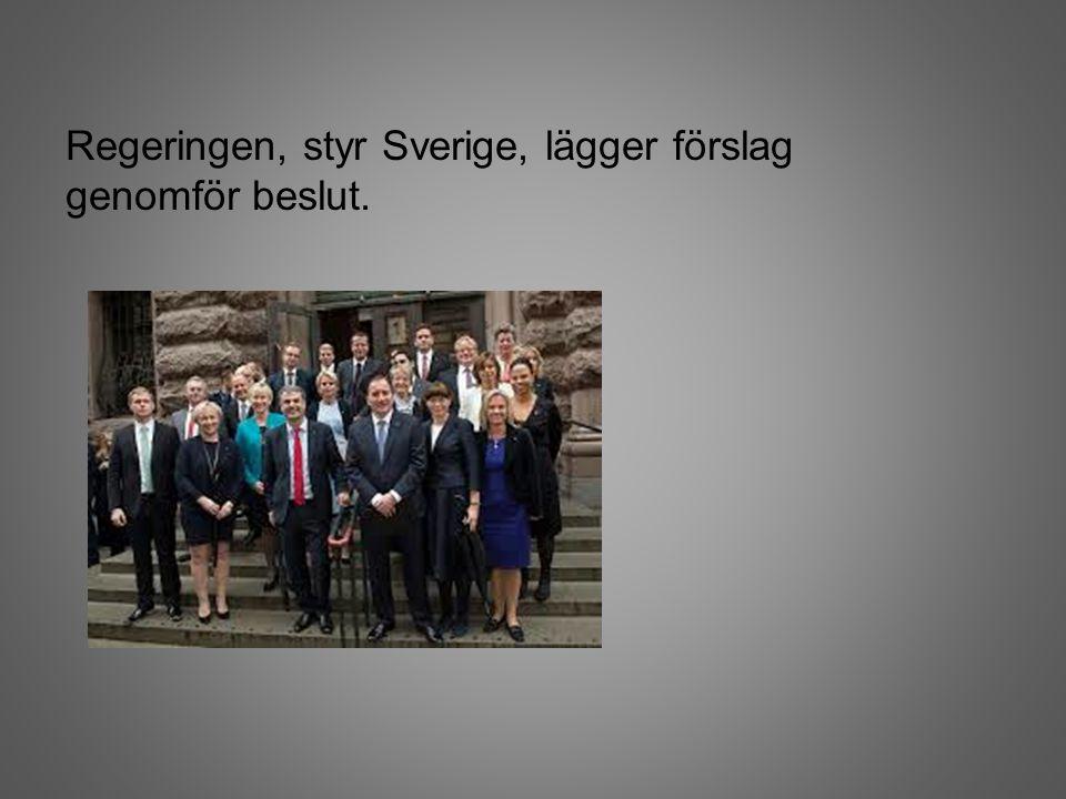 Regeringen, styr Sverige, lägger förslag genomför beslut.