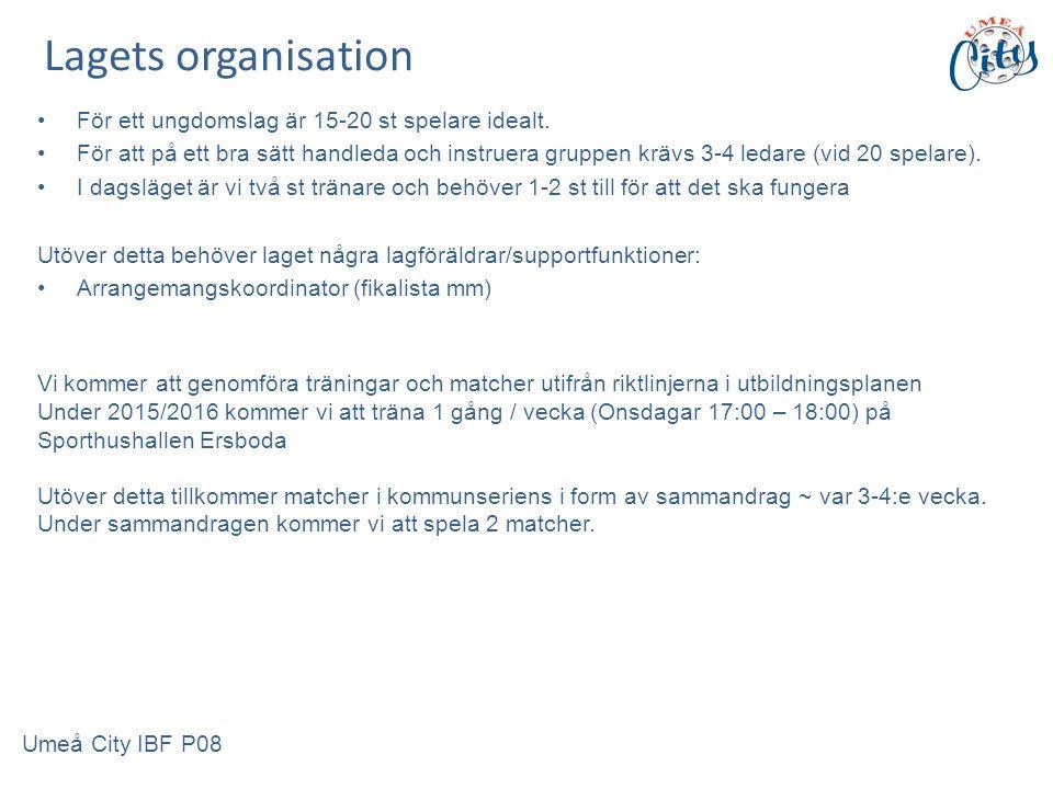 Lagets organisation För ett ungdomslag är 15-20 st spelare idealt.