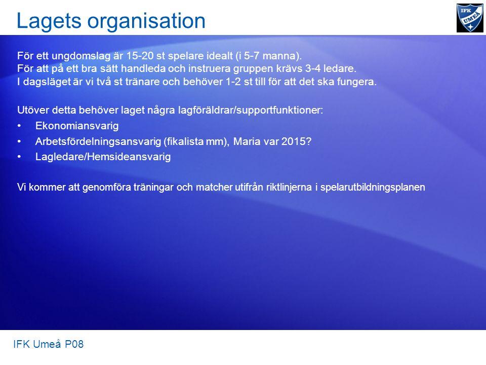 Lagets organisation För ett ungdomslag är 15-20 st spelare idealt (i 5-7 manna).