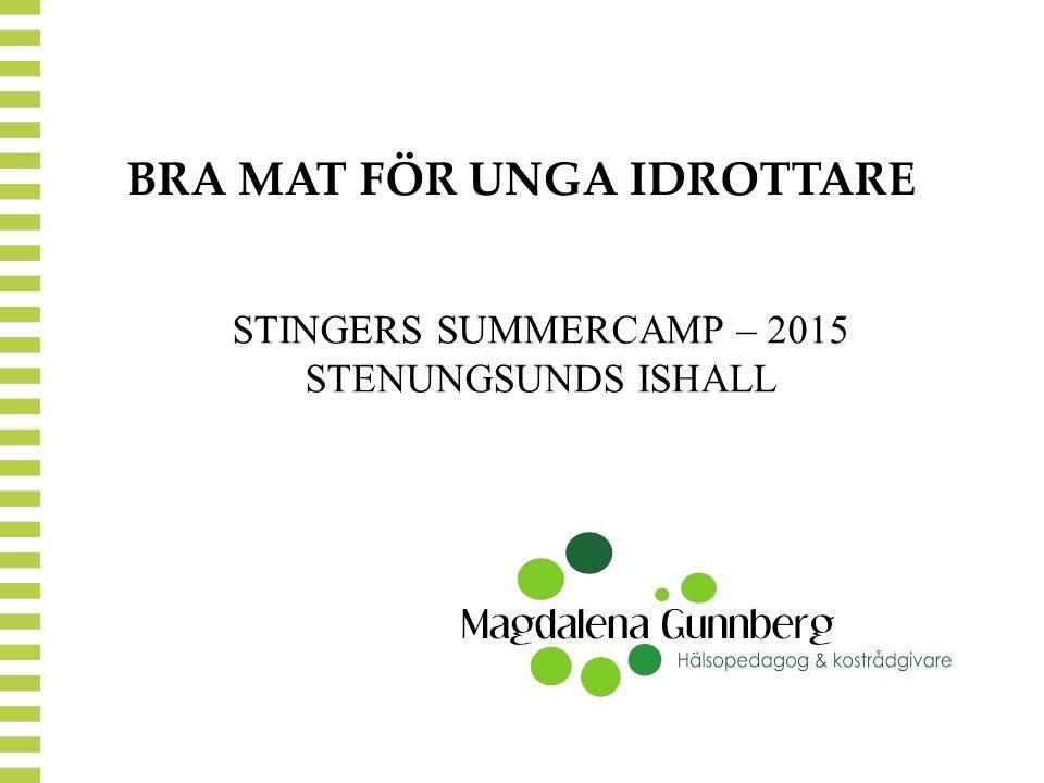 BRA MAT FÖR UNGA IDROTTARE STINGERS SUMMERCAMP – 2015 STENUNGSUNDS ISHALL