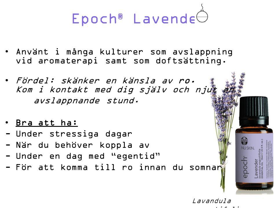 Epoch ® Lavender Använt i många kulturer som avslappning vid aromaterapi samt som doftsättning.