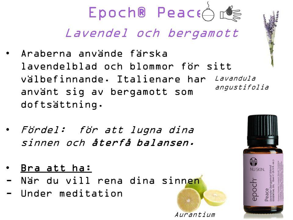 Epoch® Peace Lavendel och bergamott Aurantium bergamia Araberna använde färska lavendelblad och blommor för sitt välbefinnande.