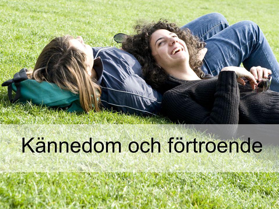 Helena Andersson Bromander Analytiker, informationsavdelningen