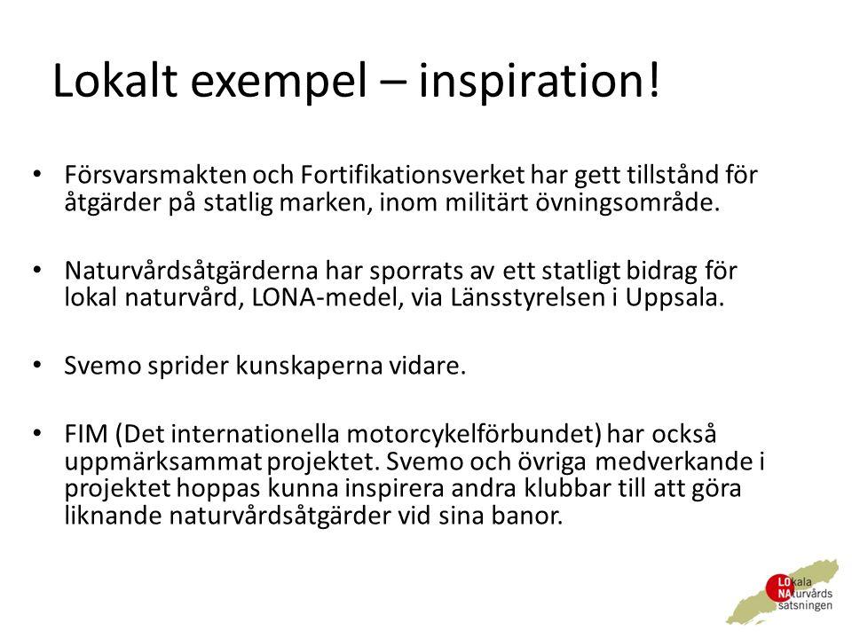 Lokalt exempel – inspiration.